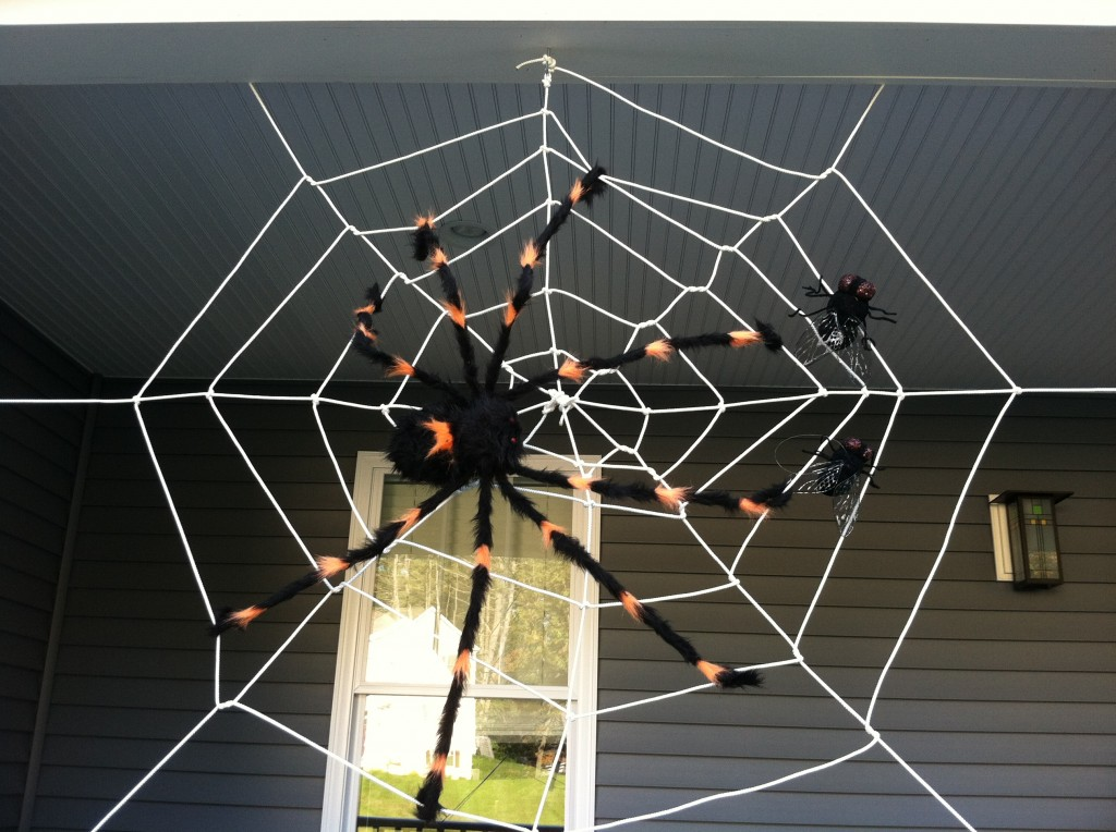 DIY Make a Spider Web