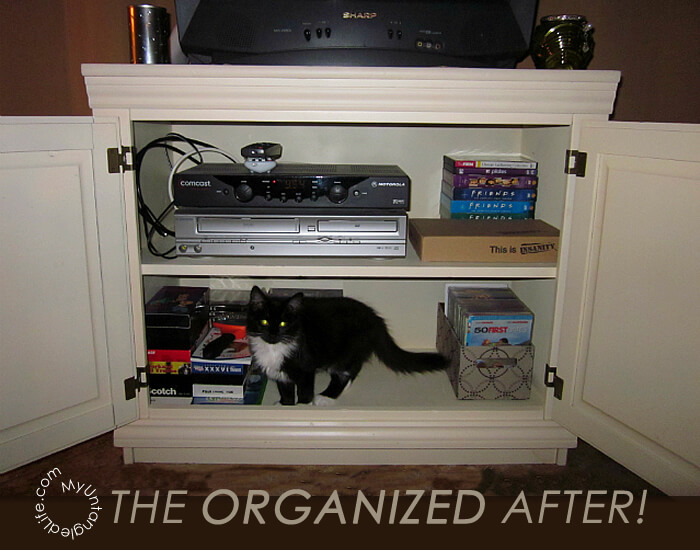 DVD Organization Project Finished
