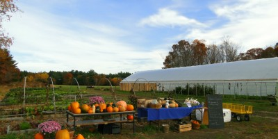 'tis the Season: How to be a Farmer's BFF