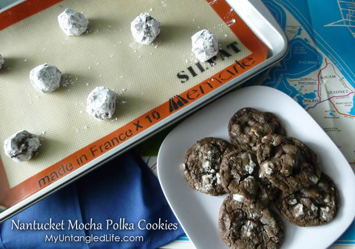 Mocha Polkas - Mocha Chocolate Chip Cookies Recipe