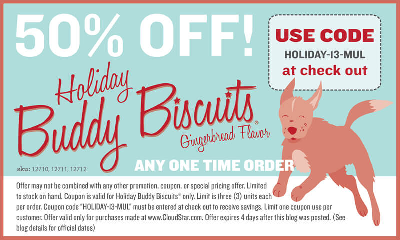 Cloudstar.com Holiday Coupon