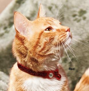 Jeweled Cat Collar