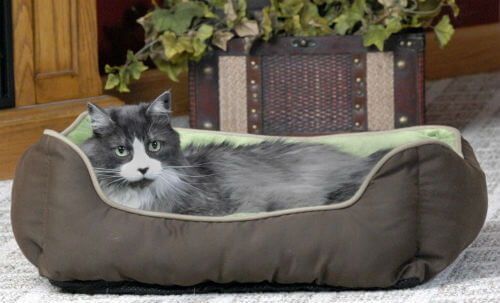 Self Warming Pet Bed2