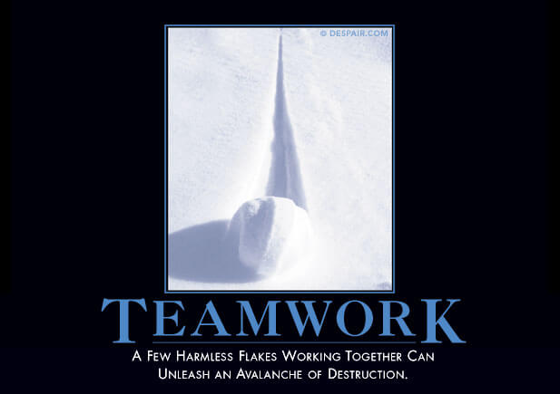 Despair.com Teamwork Demotivator