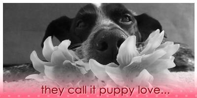 Ruby Valentine 2014 - MyUntangledLife.com