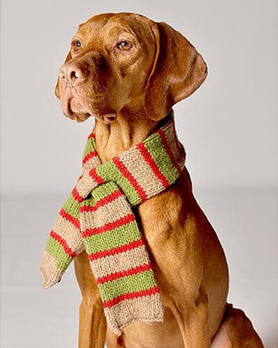 Handknit Wool Dog Scarves