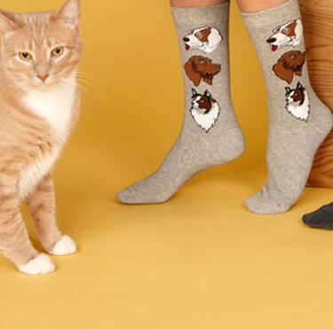 Pet Lover Socks make a great gift!