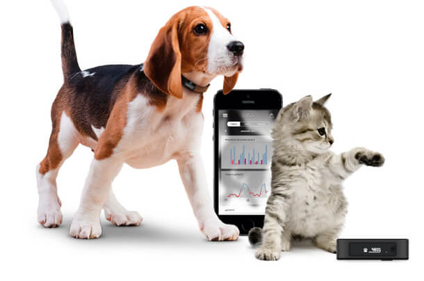 Motion Pet Activity Tracker - A great gift for geeks!