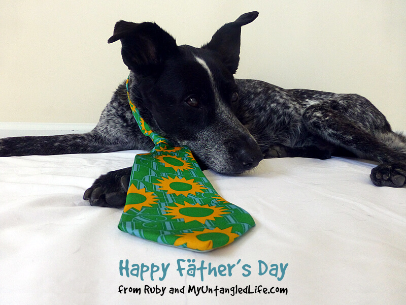 2015 Fathers Day Haiku from Ruby the Bloggin' Dog and MyUntangled Life