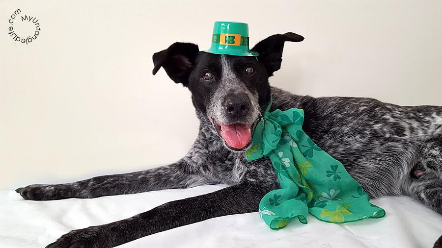 Ruby Celebrates St. Patricks Day 2016