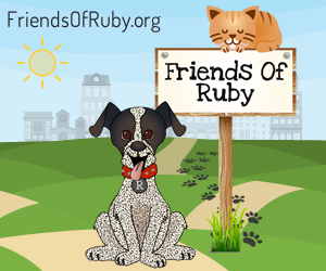Support Animal Charities - Visit Friends Of Ruby #FriendsOfRuby
