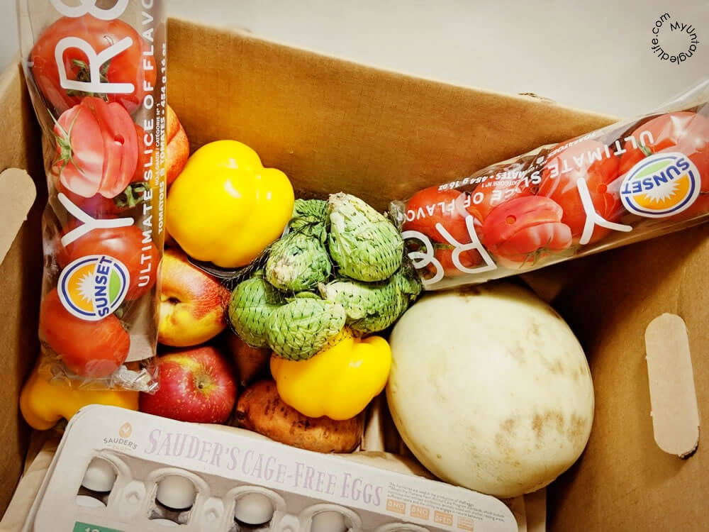 Hungry Harvest Review - Produce Delivery for the Greater Good
