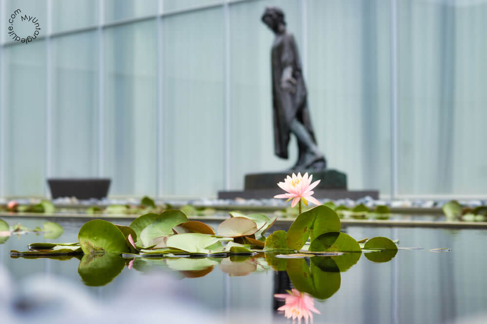 Jean de Fiennes and Lily Pond - Auguste Rodin - North Carolina Museum of Art